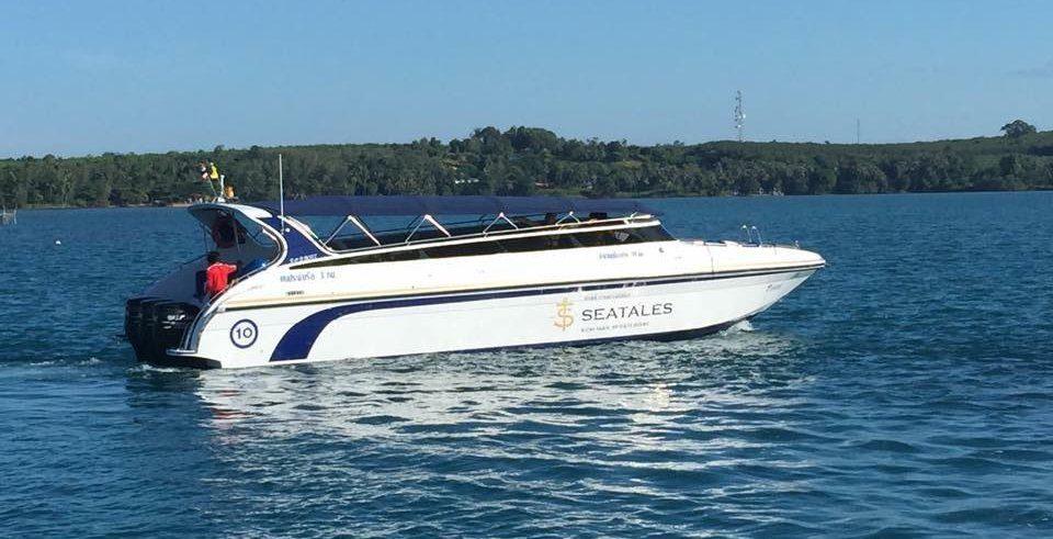 Лодка компании Seatales